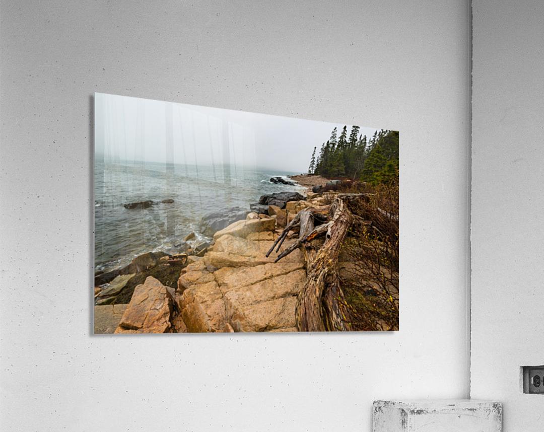 Driftwood ap 2257  Acrylic Print