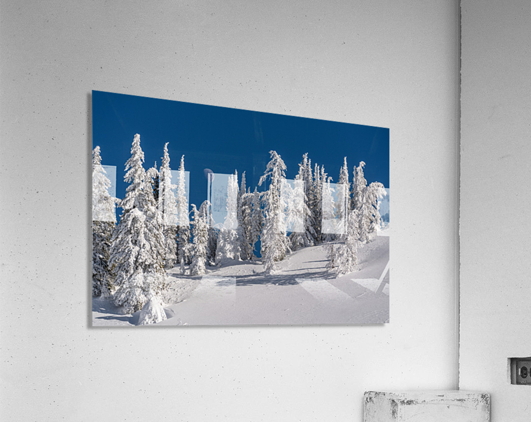 Alpine moon  Acrylic Print