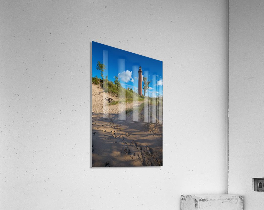 Little Sable ap 2442  Acrylic Print