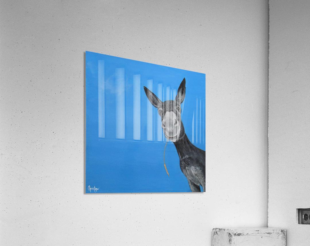 Dusty   Acrylic Print