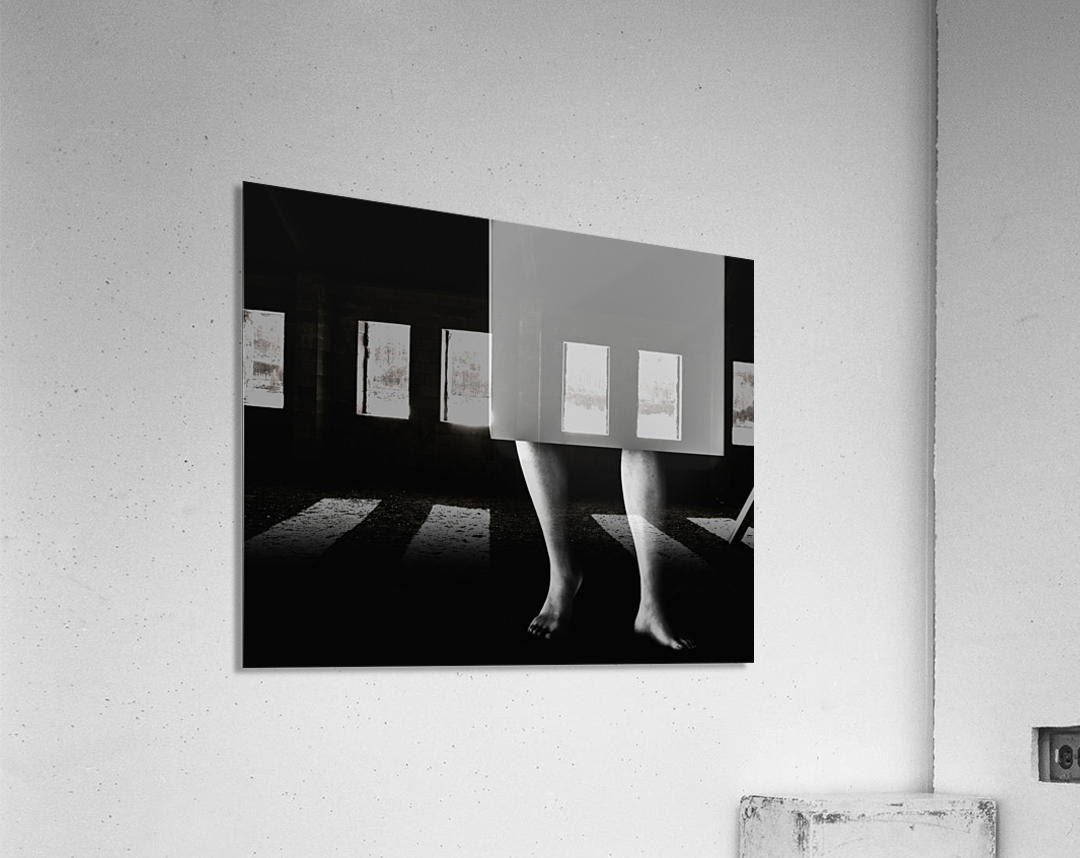 Life In A Box 2  Acrylic Print
