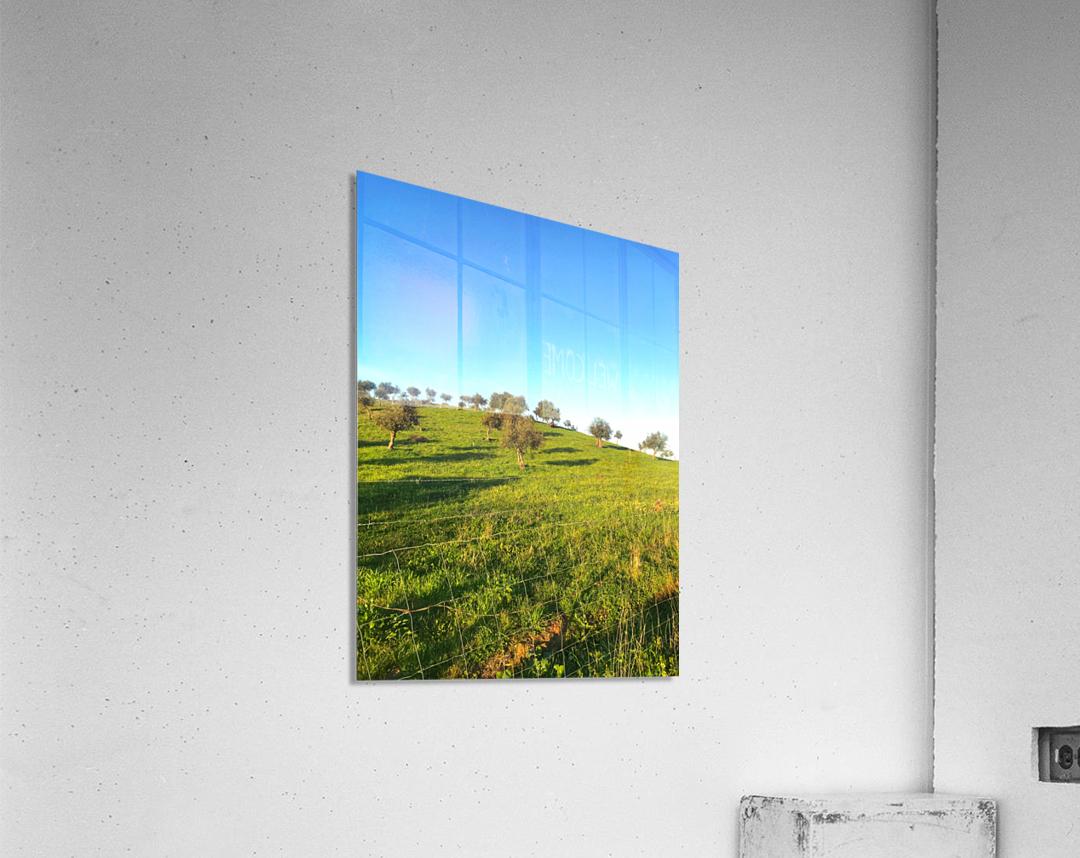Landscape of central Portuga  Acrylic Print