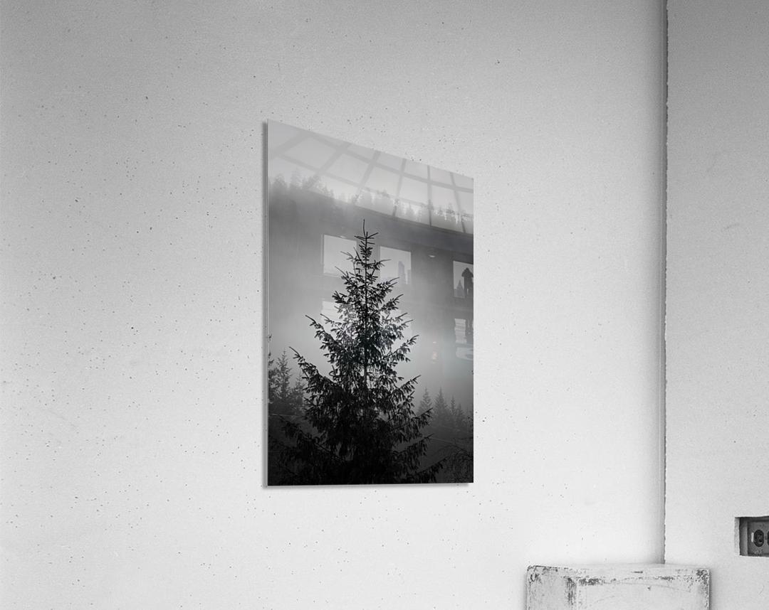 Lonliest Tree  Acrylic Print