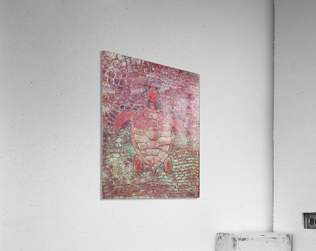 tortoise  Acrylic Print