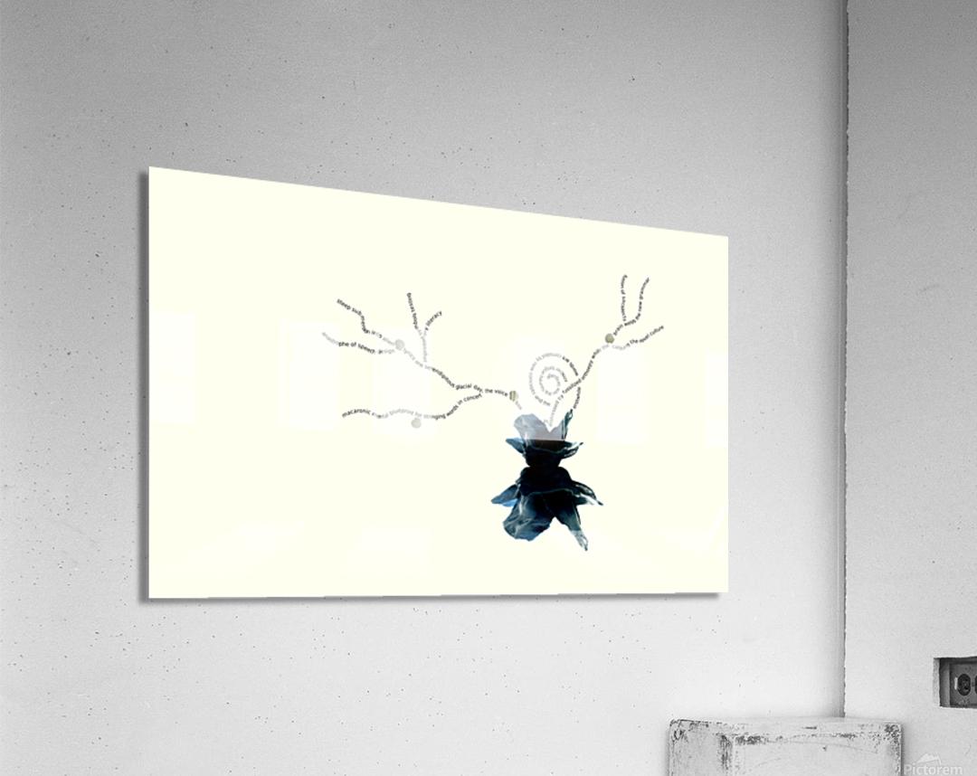 Immersion  Acrylic Print