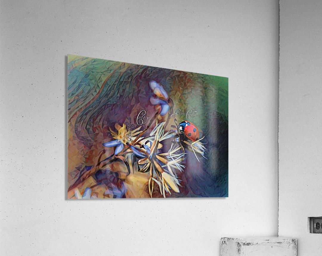 Cocci Art Giaro Cavalli  Acrylic Print