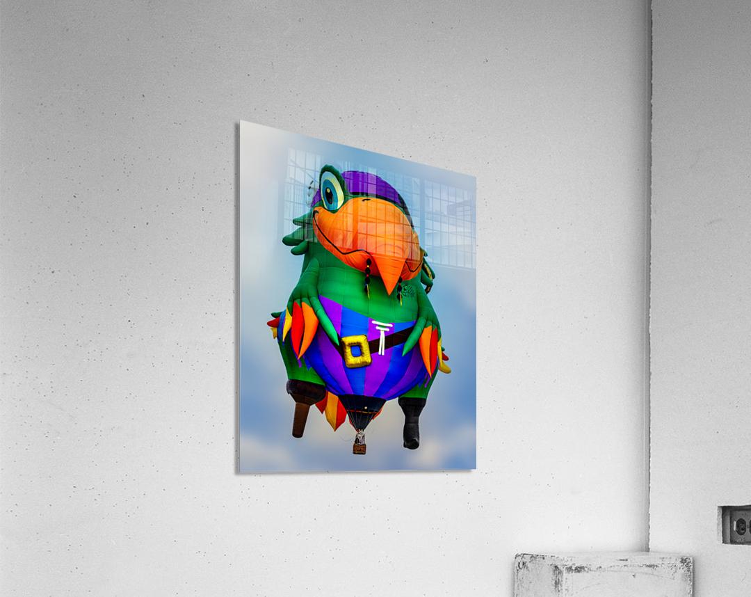 Pirate Parrot Adventures  Acrylic Print