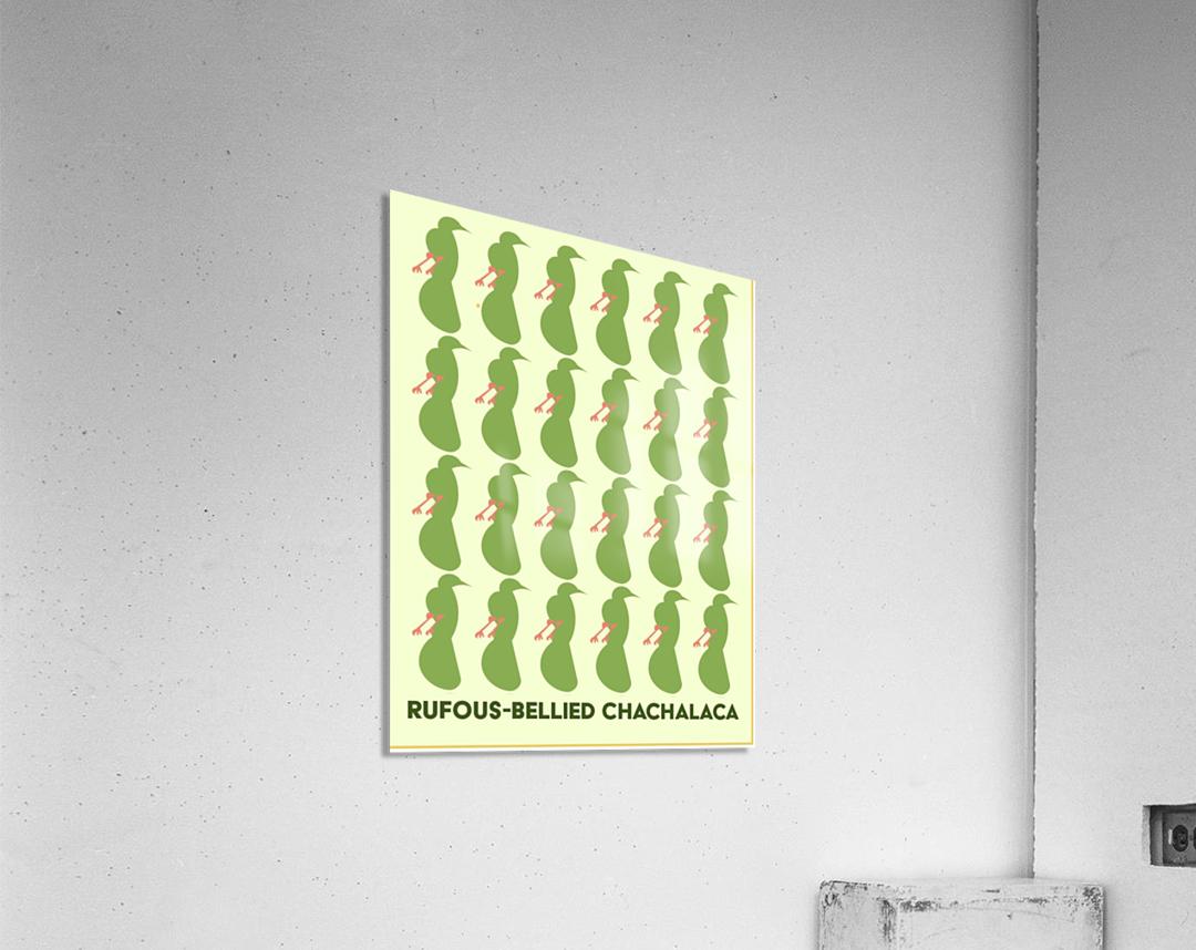Rufus -Bellied ChaChalaca  Acrylic Print
