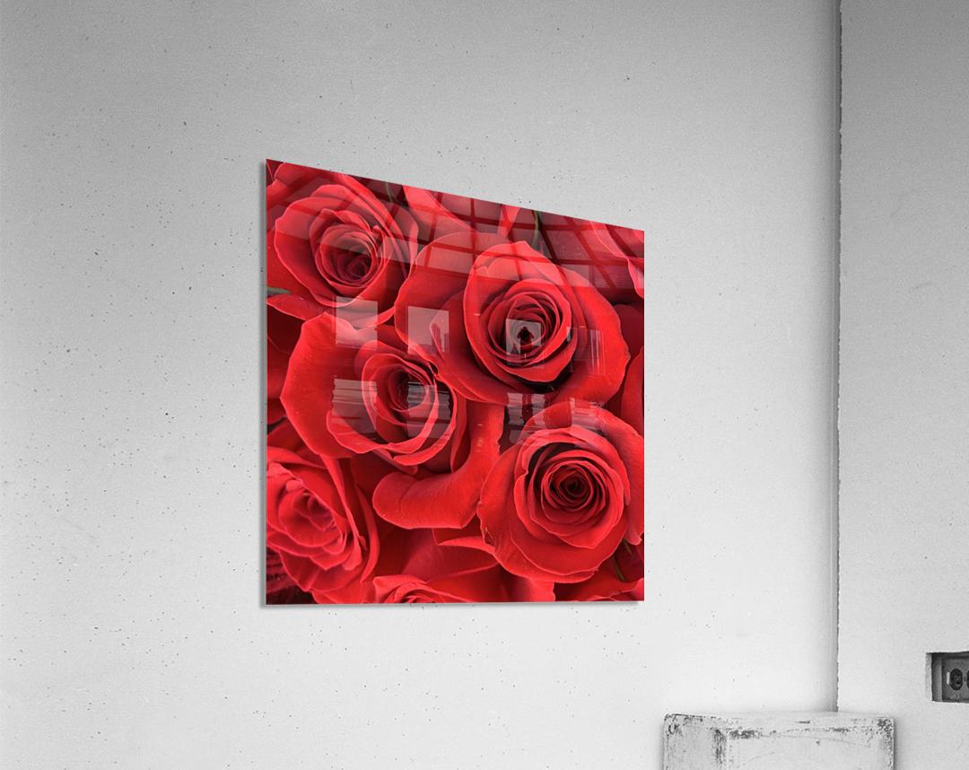 Eternal Roses  Acrylic Print