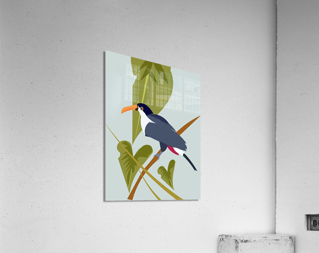 Toucanish  Acrylic Print
