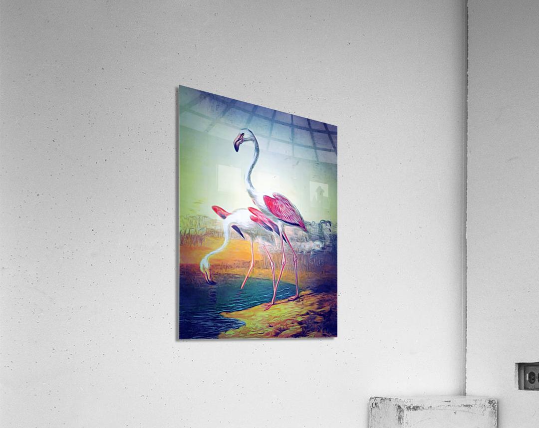 Regiment of Flamingoes  Acrylic Print