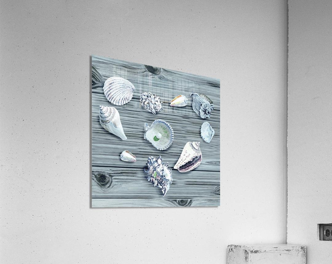 Silver Gray Seashells Heart On Ocean Shore Wooden Deck Beach House Art   Acrylic Print