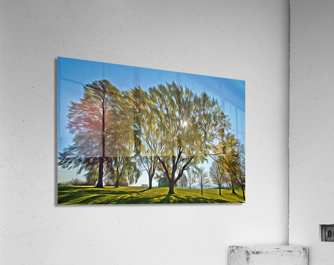 Soleil du printemps  Acrylic Print