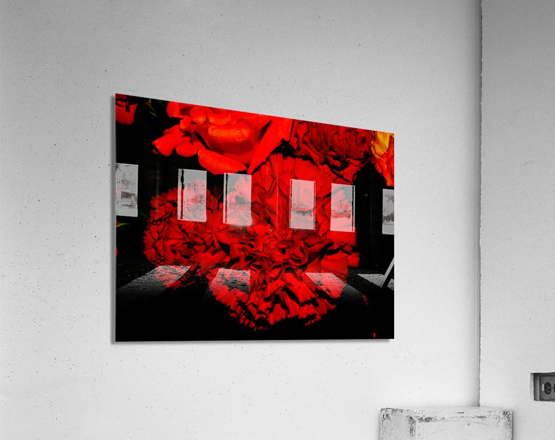 sofn ED31563A  Acrylic Print