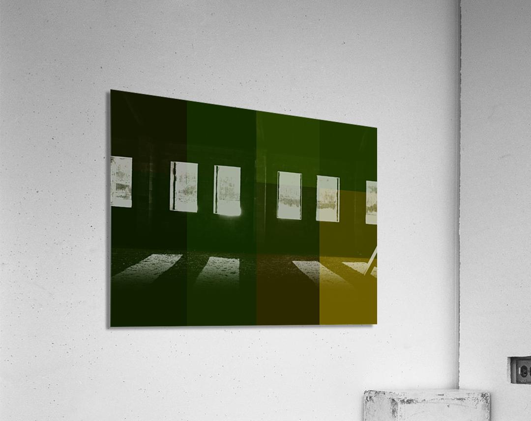reduci A2DE8A3C  Acrylic Print