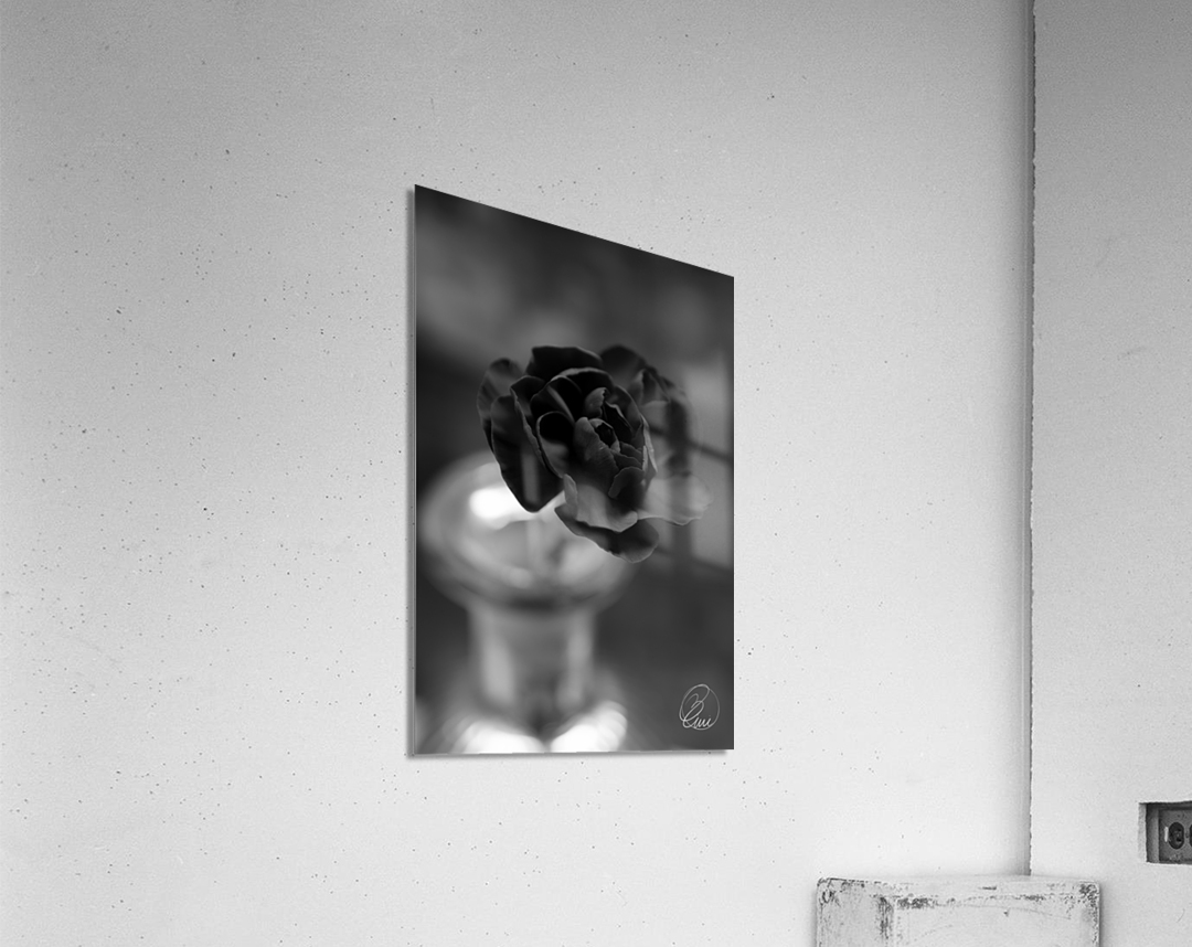 In an Instant   Acrylic Print