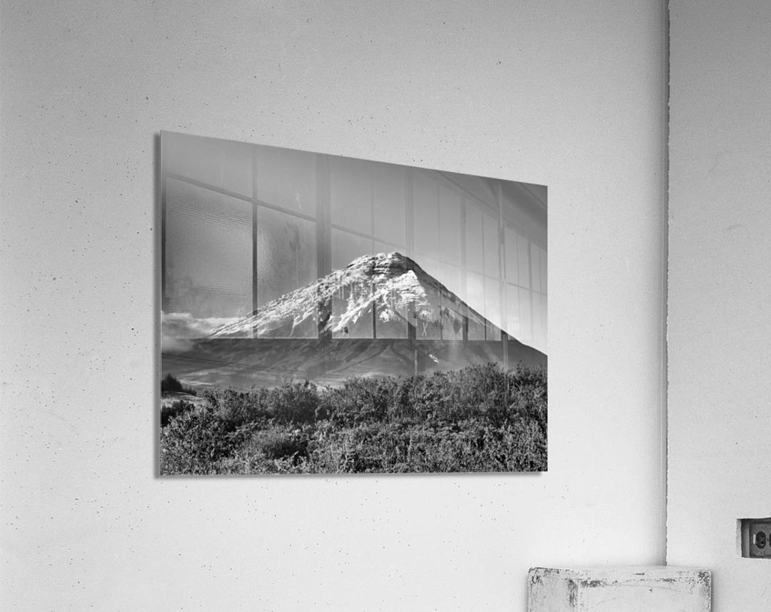 24810937 454A 4C55 B80D 39BE65C2F639  Acrylic Print