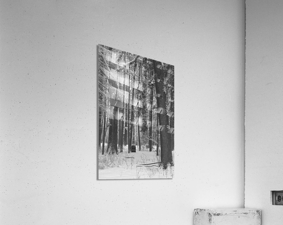 Blue Barrel in Woods  Acrylic Print