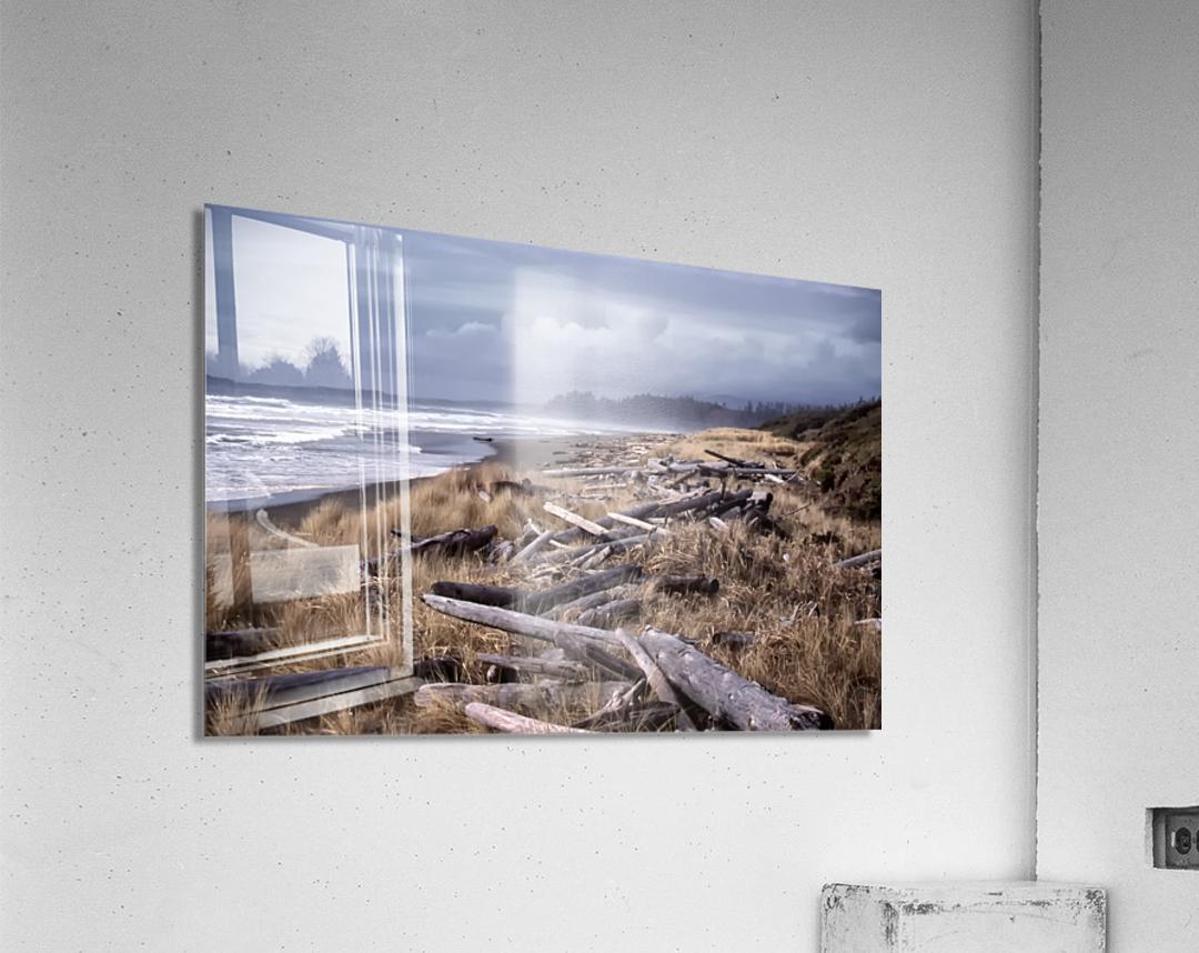 Beached Driftlogs  Acrylic Print