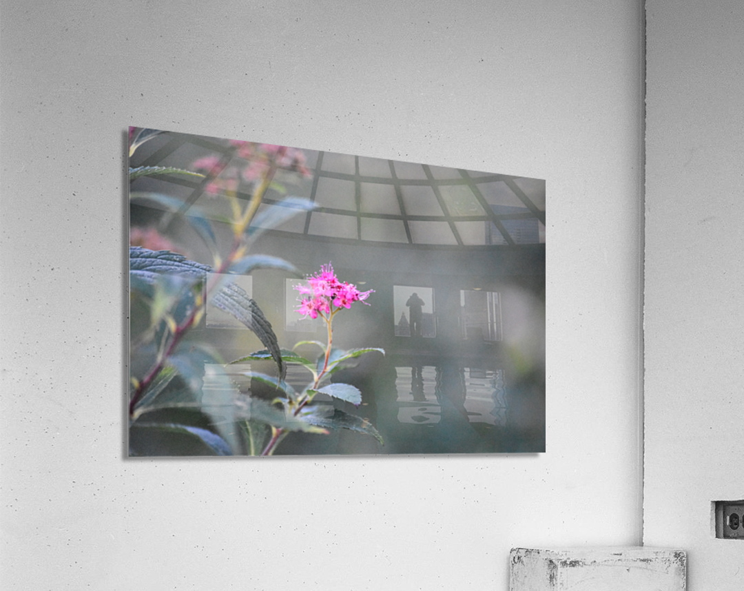 2965  Acrylic Print