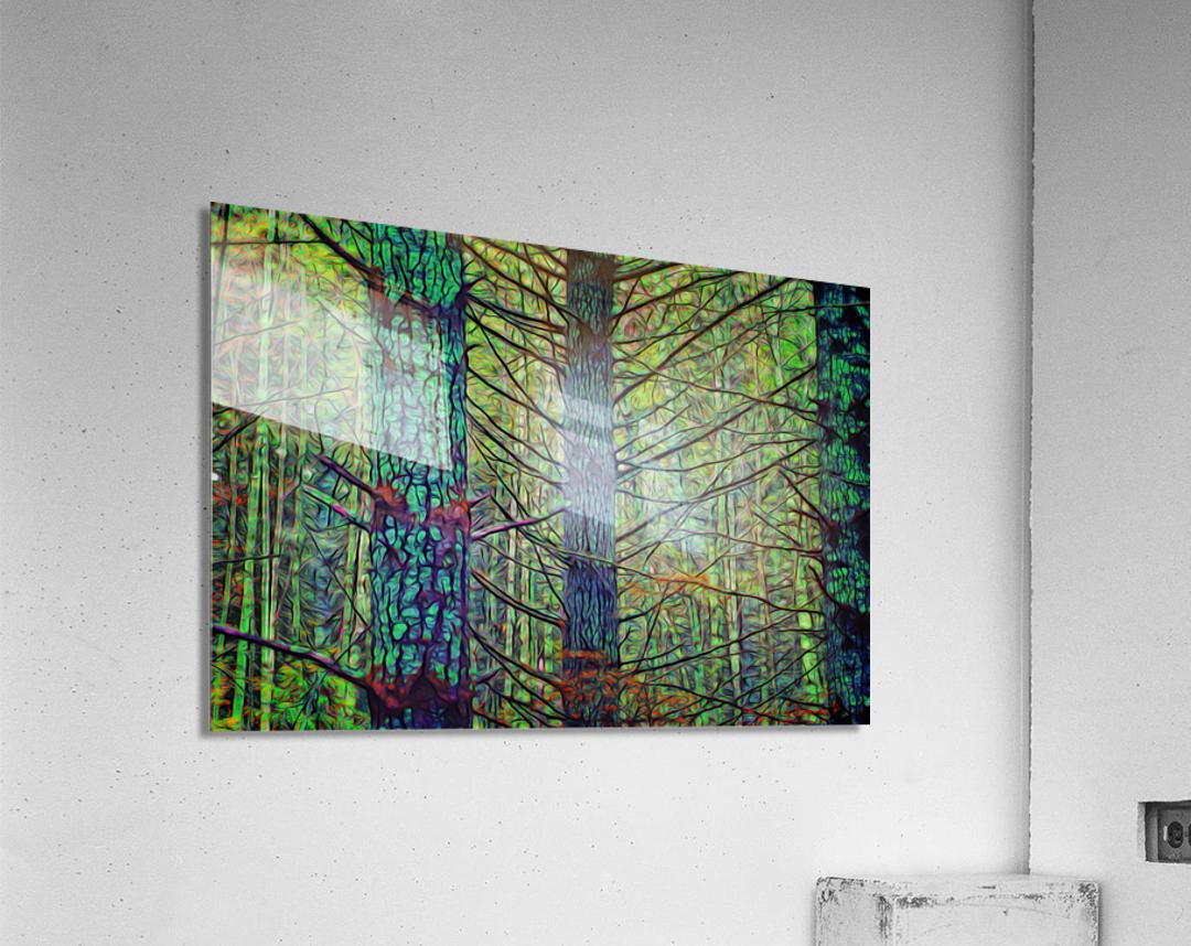 Forest Splendor  Acrylic Print