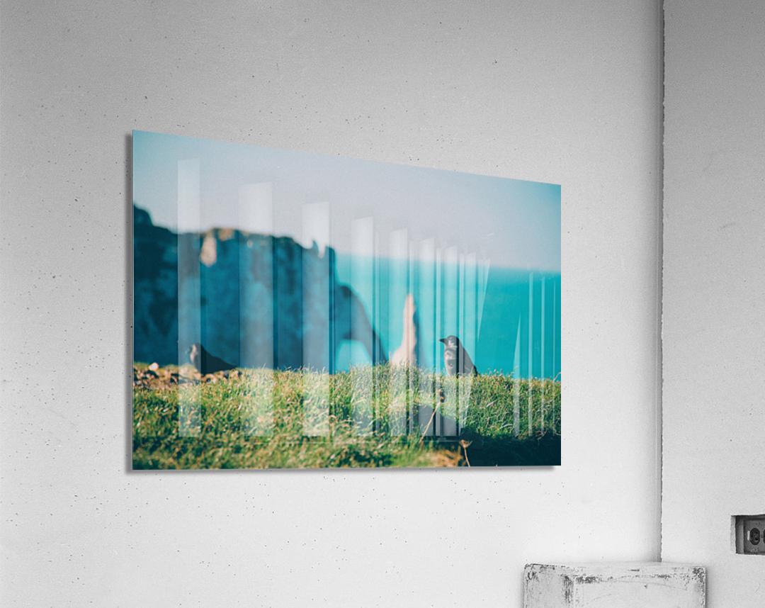 Photobook 8167  Acrylic Print