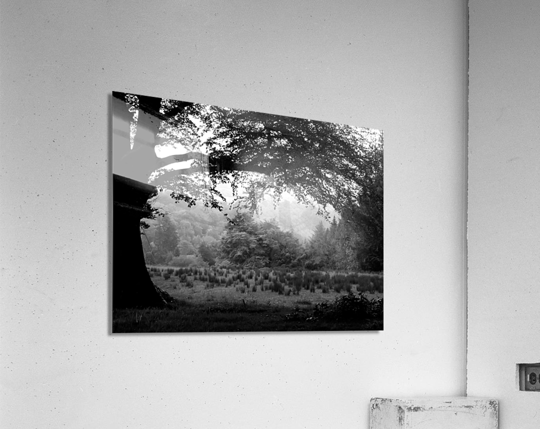 Black and White Field  Acrylic Print