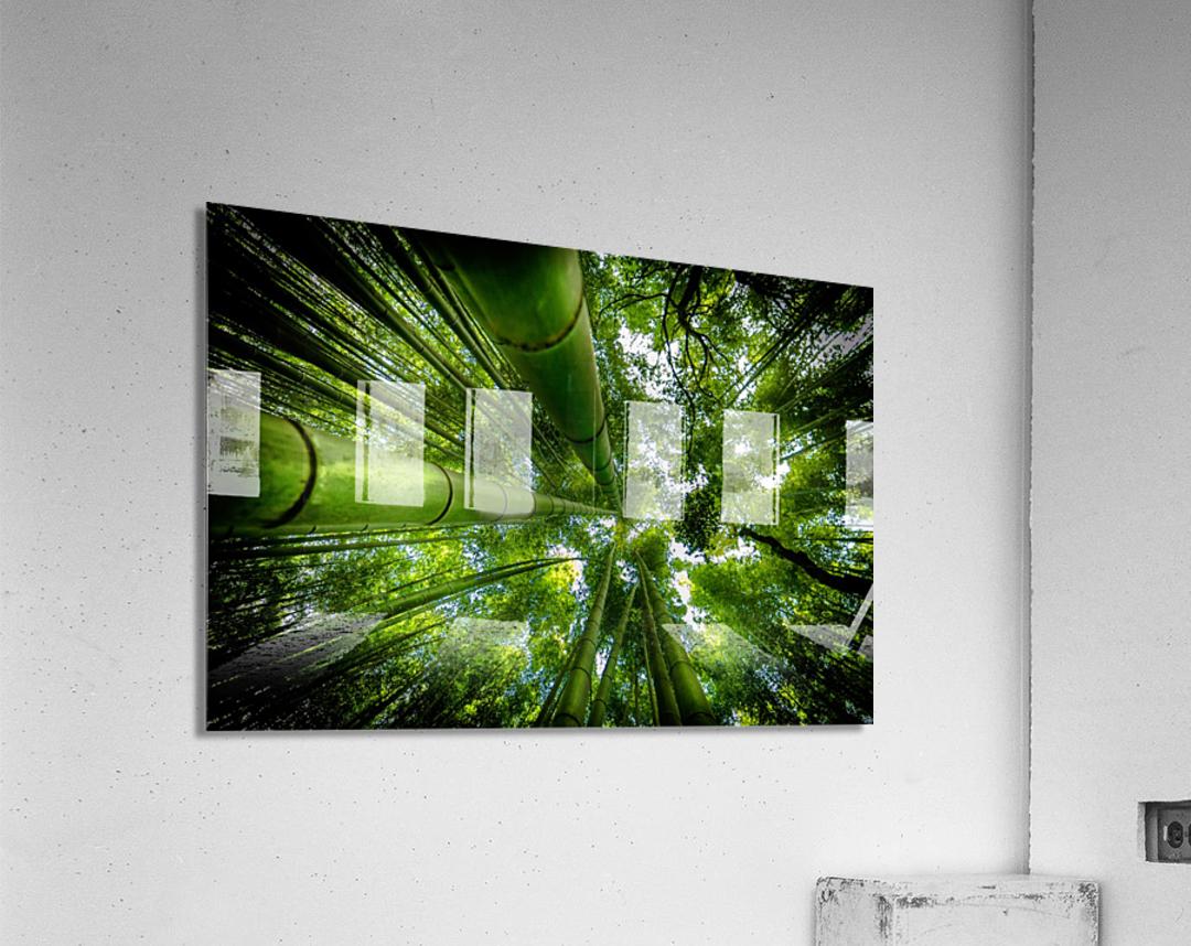 ARASHIYAMA  Acrylic Print
