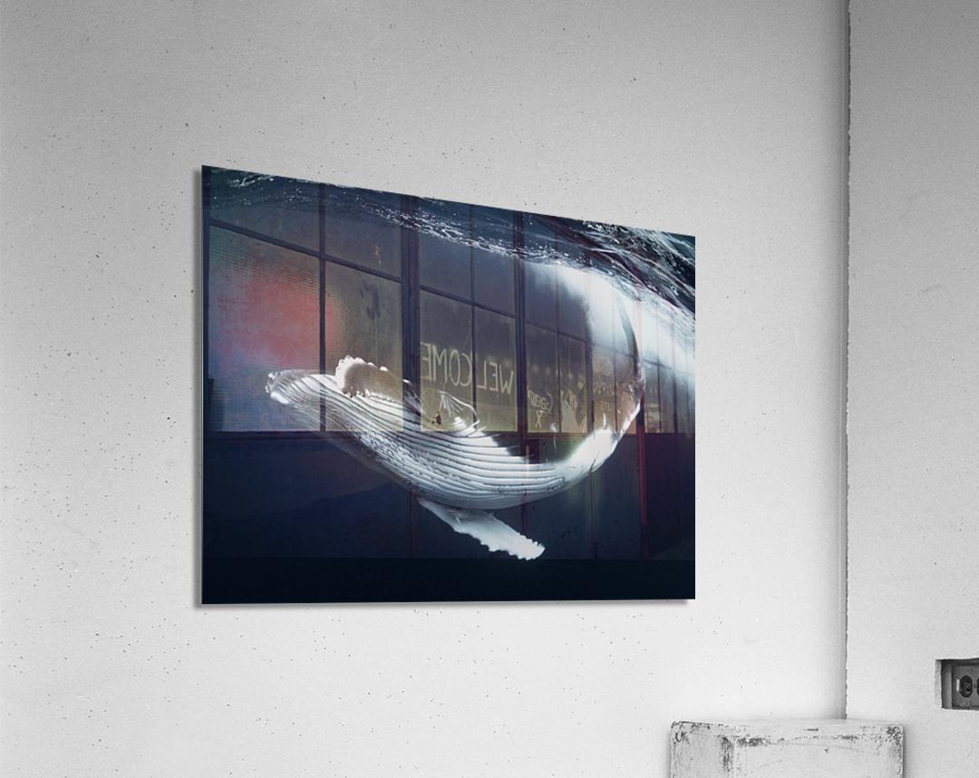 Beautiful turn  Acrylic Print