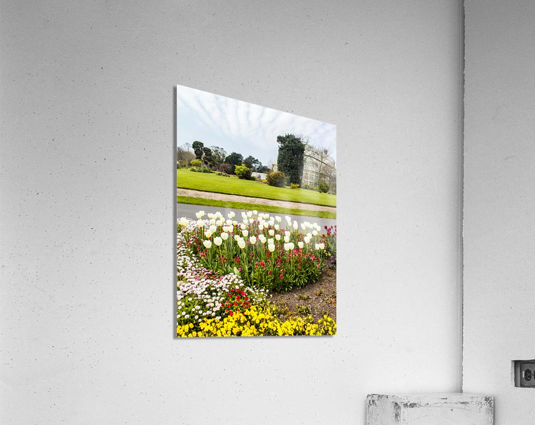 Botanic Garden II  Acrylic Print
