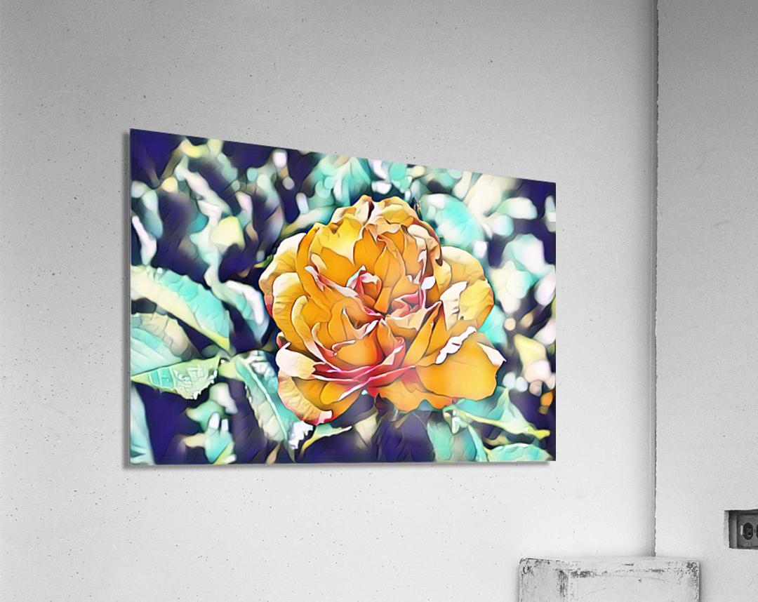 Rose in Yellow  Acrylic Print