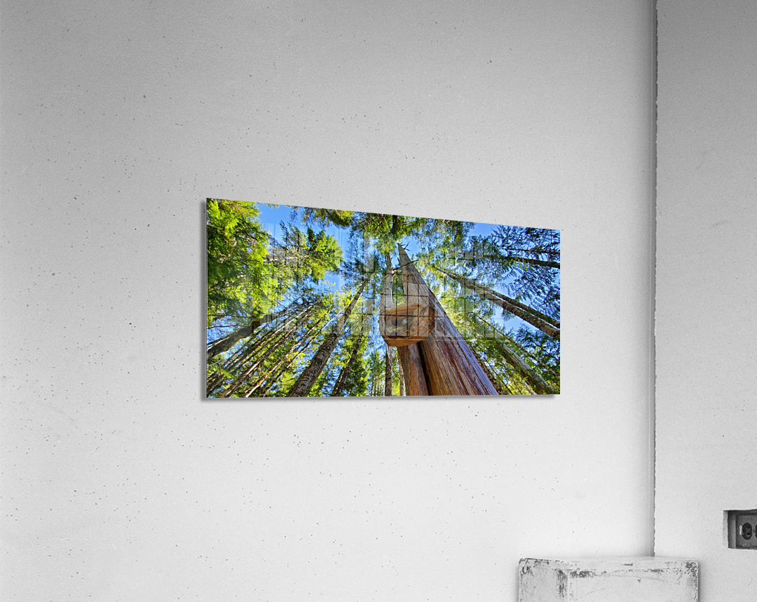 As Above  Acrylic Print