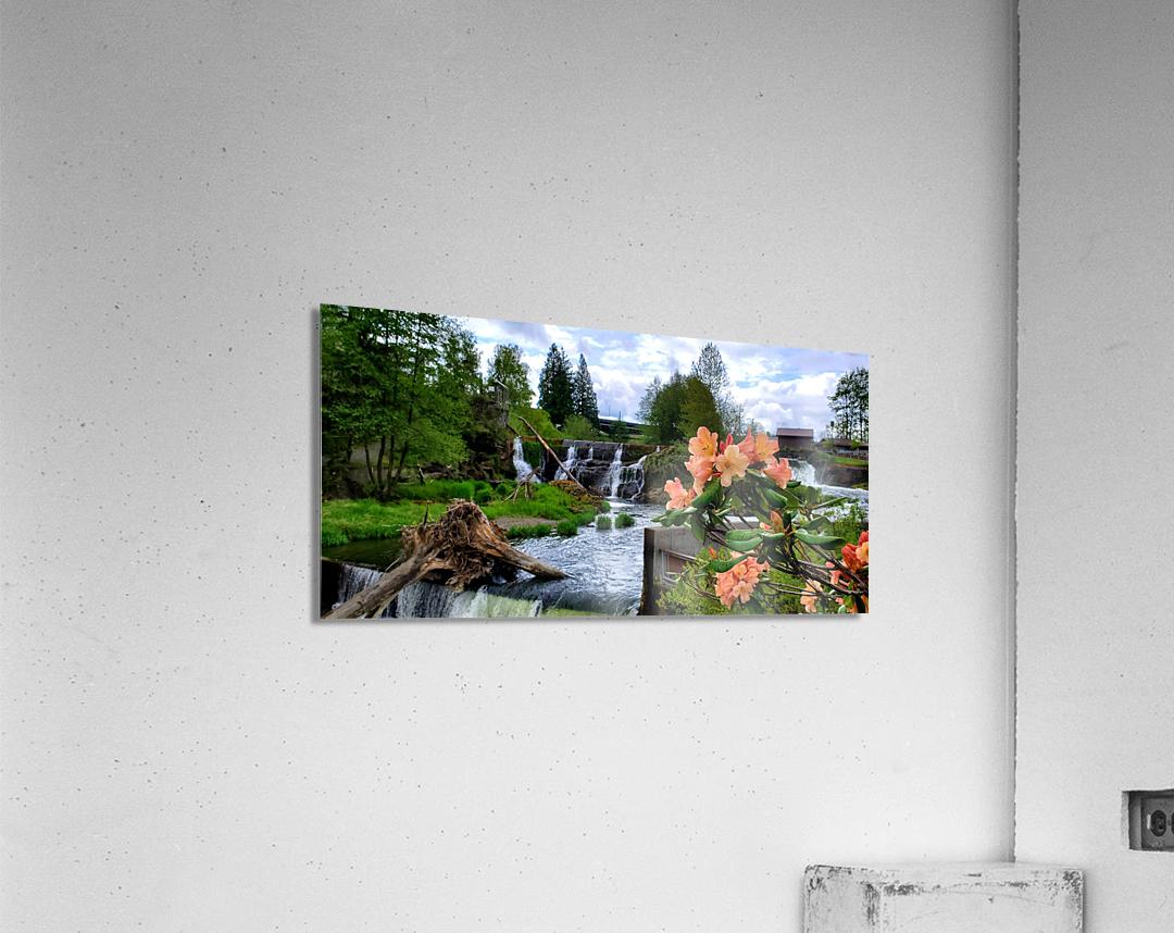 Tumwater Falls  Acrylic Print