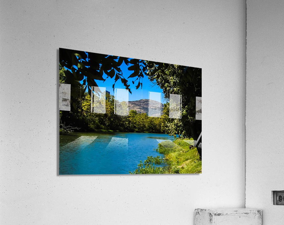 Through the trees  Acrylic Print