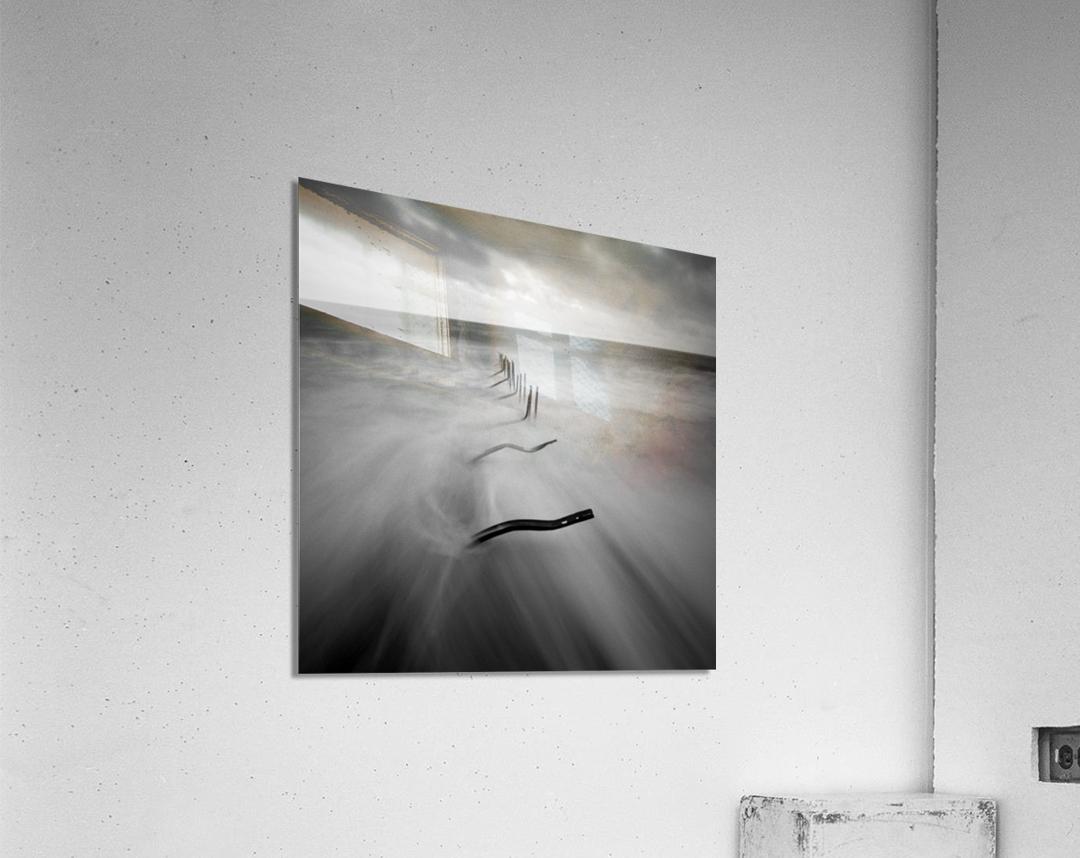 200113  P67 TRI X 002A  Acrylic Print