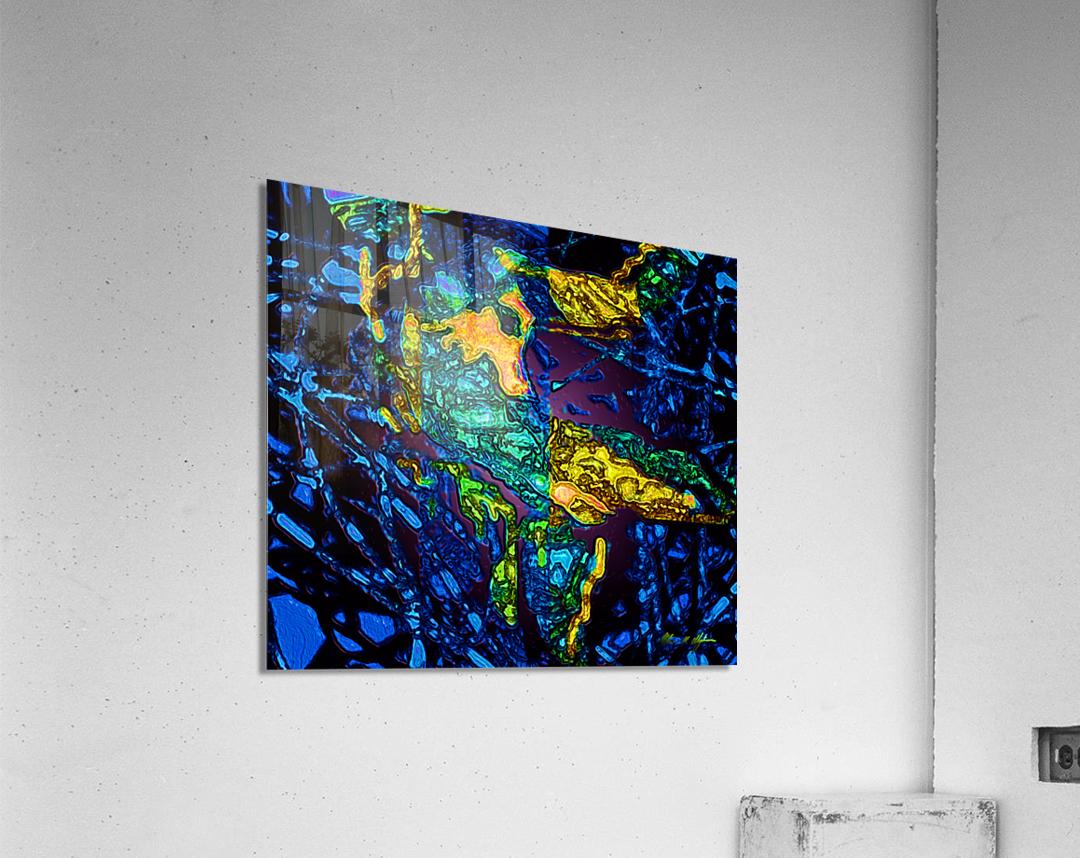 Tangled Transformation 3  Acrylic Print