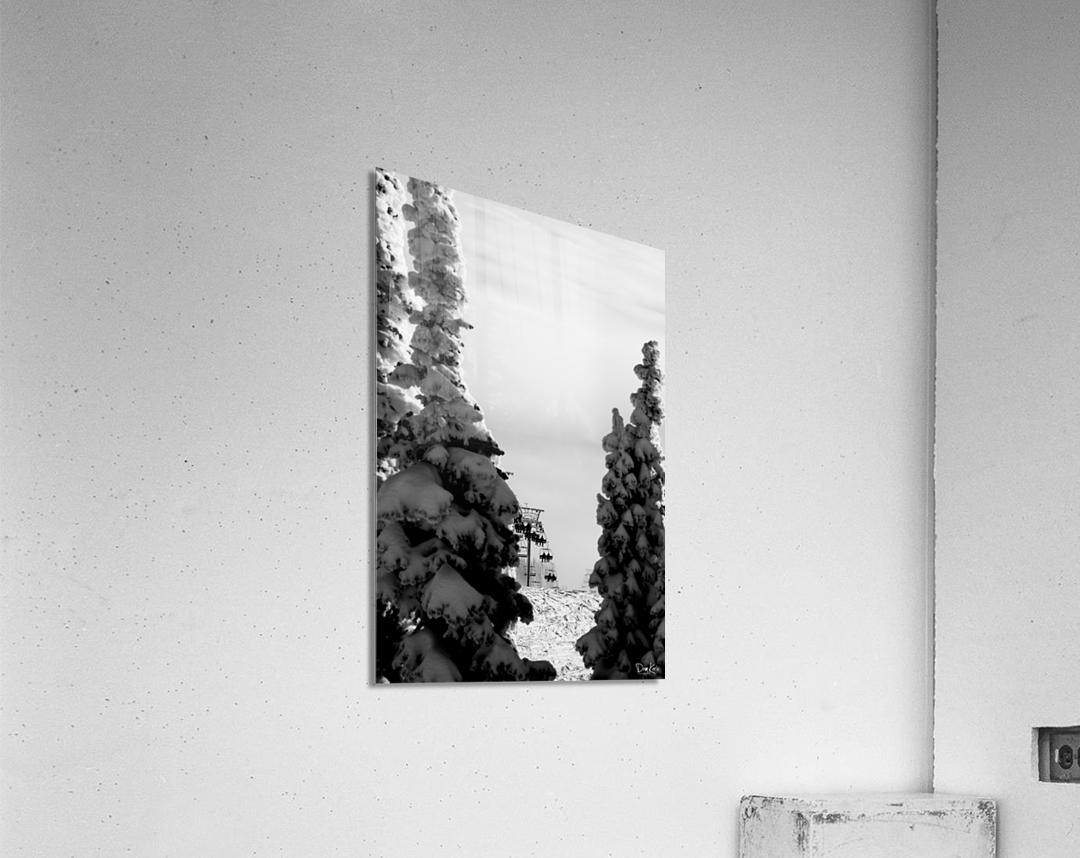 Silver Sliver  Acrylic Print