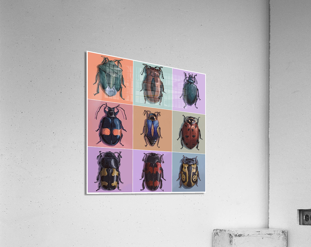 Assorted Beetles  Acrylic Print