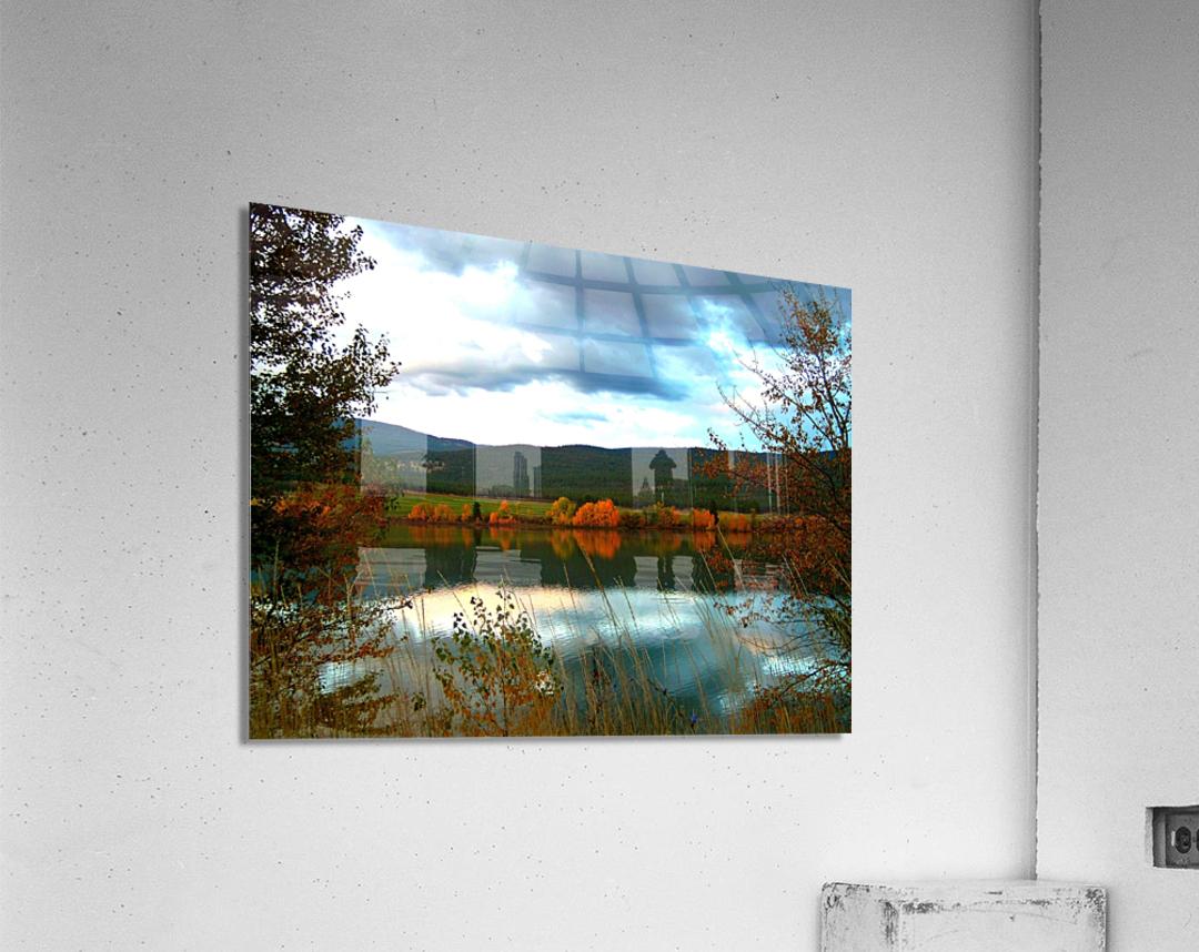 LS031  Acrylic Print