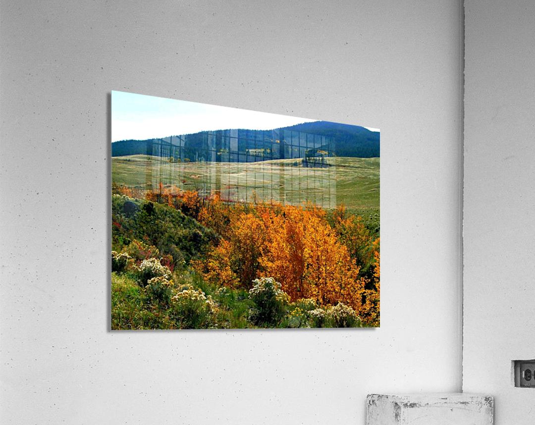 LS028  Acrylic Print