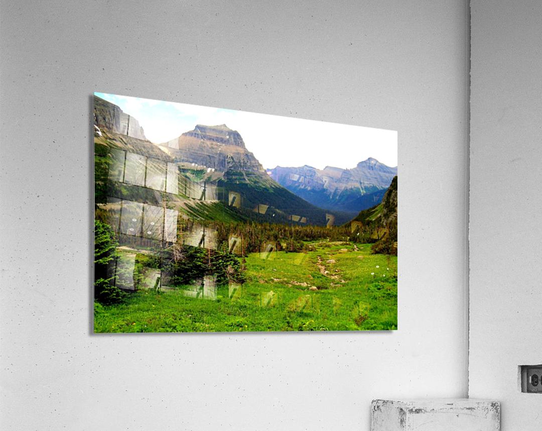 LS021  Acrylic Print