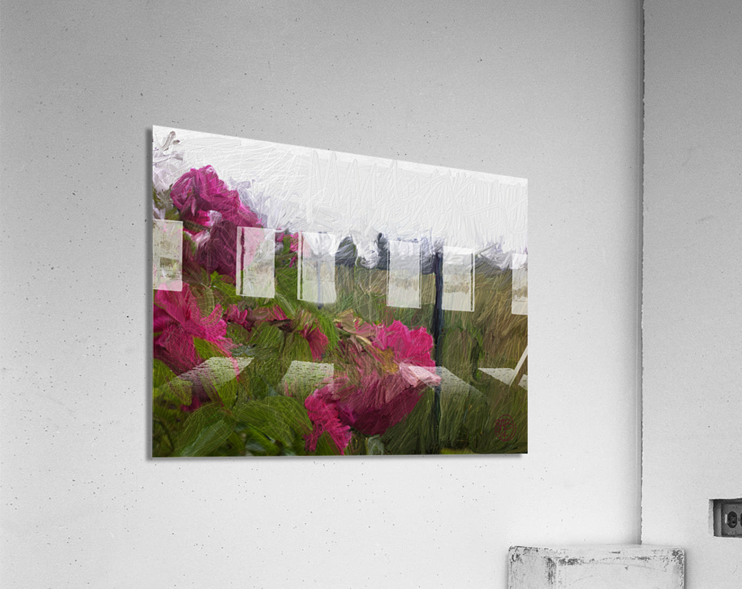 Seeing What Monet Saw  Acrylic Print