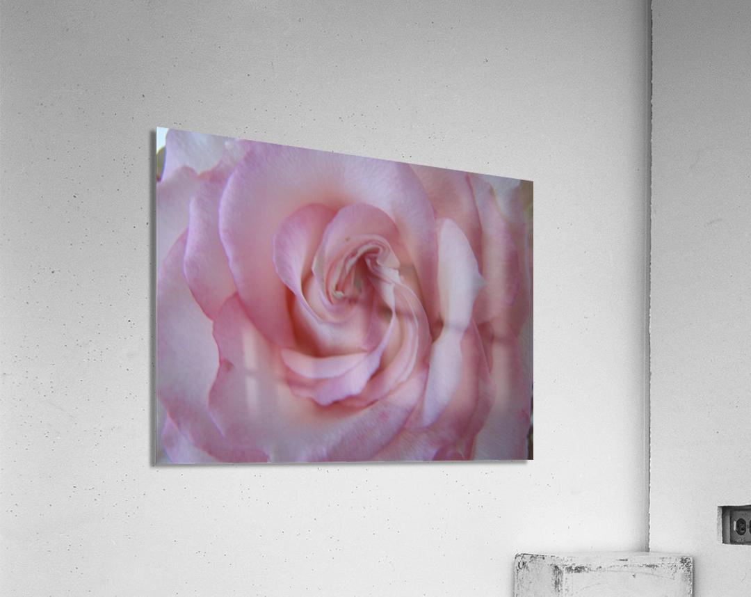 Softness  Impression acrylique