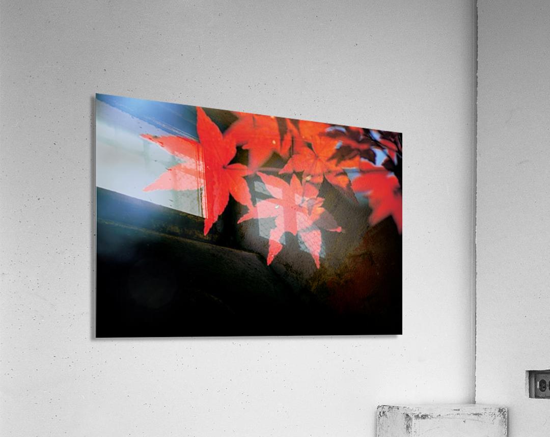 landscape_2_1134  Acrylic Print