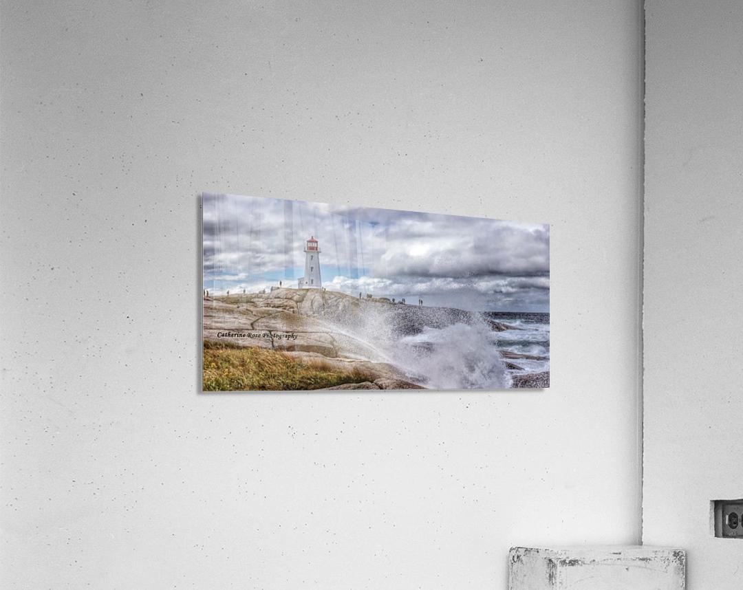 IMG_4674  Acrylic Print
