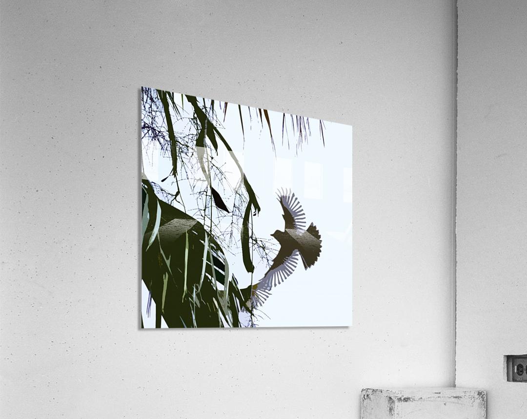 Orioles Abstract 2   Acrylic Print