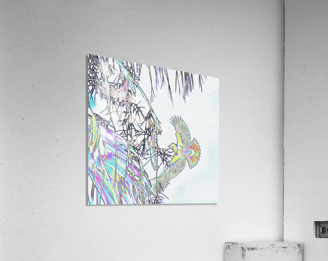 Orioles Abstract 3    Acrylic Print
