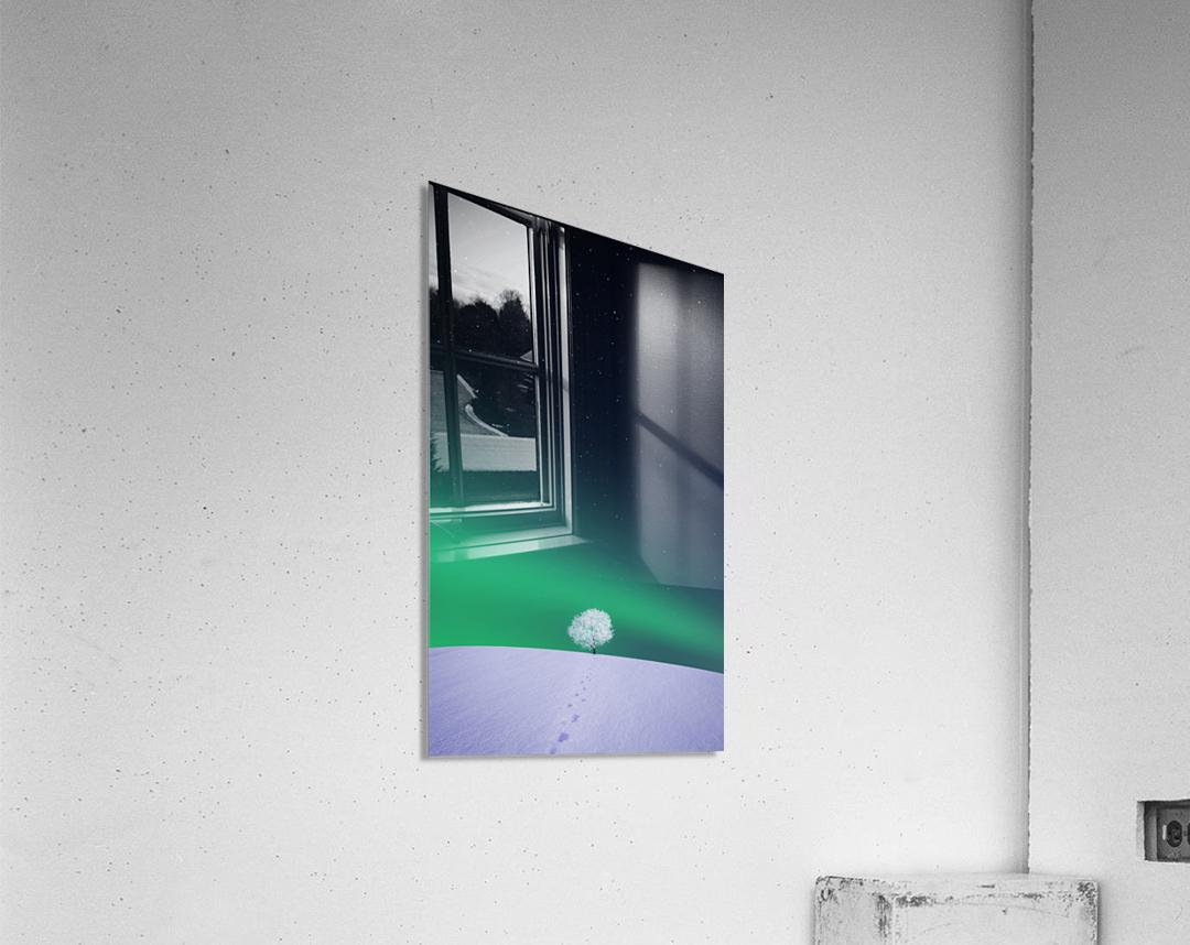 Apple  Acrylic Print