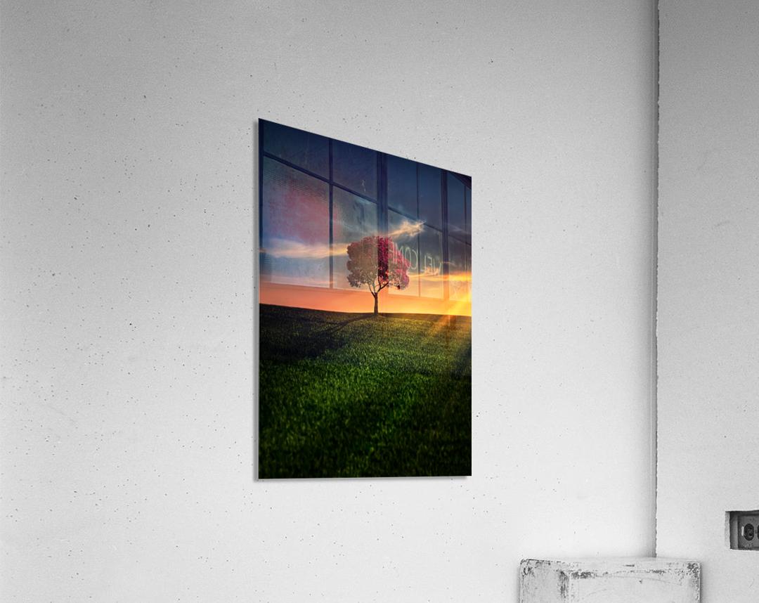 Awesome Solitude  Acrylic Print