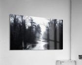 Slalom  Acrylic Print